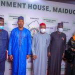As Zulum revives Borno plastic, NALDA places order for 2 million sacks