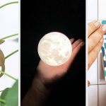 33 Things Under $25 To Update Your Home In 2021