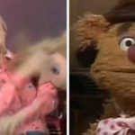 24 Best Muppet Show Moments Of All Time