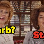 "Are You More Like Barb Or Star From ""Barb And Star Go To Vista Del Mar""?"