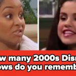 Can You Name All 27 2000s Disney Channel Shows? Quiz