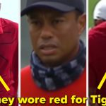 How 17 Celebrities Show Support For Tiger Woods After Car Crash